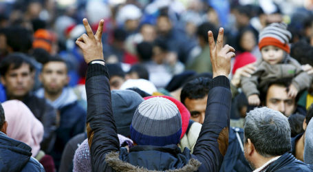 Le chiffre affolant des Marocains réfugiés en Allemagne!