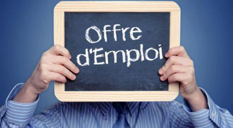 Inédit! L'Ofppt produit plus de chômage que l'Université! (HCP)