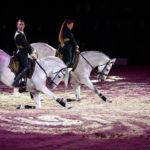 Endurance équestre, art et photographie lors de la 2e journée du Salon du Cheval d'El Jadida
