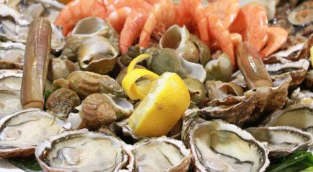 Les huîtres de Dakhla déclarées impropres à la consommation