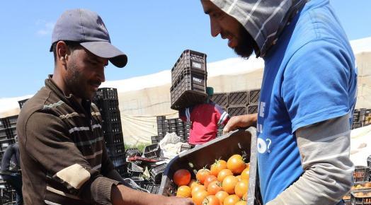 agriculture maroc croisssance 5 octobre 2016