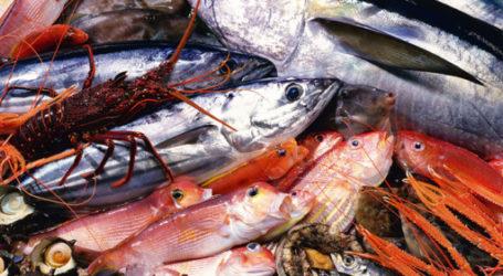 Prix Alimentaires: l'effet Mohcine Fikri