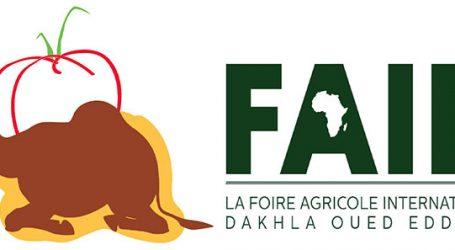 Coup d'envoi pour la Foire Agricole Internationale de Dakhla