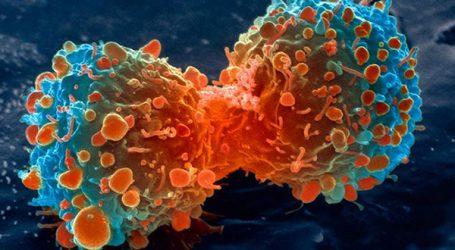 Santé: Des médicaments anti-cancéreux seront produits au Maroc
