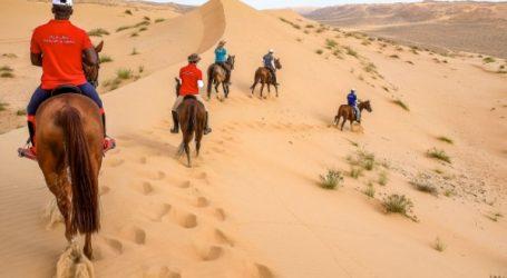 Gallops of Morocco, Du 25 février au 4 mars 2018