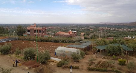 La Fondation Coca-Cola pour l'Afrique lance un nouveau programme d'optimisation de l'irrigation dans le Haut-Atlas