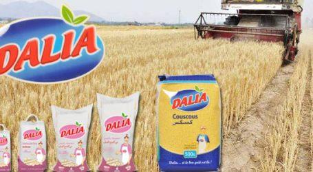 Pâtes Dalia, la technologie au service de la qualité