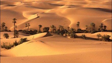 Bien-Être/Index: le bonheur est dans le sable!