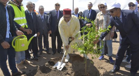 La Société d'Aménagement Zenata (SAZ) lance les premières plantations du parc central de l'Eco-Cité Zenata