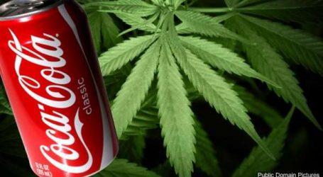 Bientôt du cannabis dans les boissons Coca Cola?