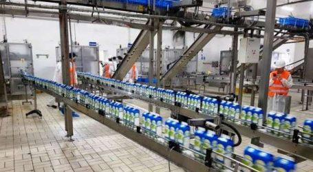 Lait: une journée à l'usine Fqih Bensaleh de Centrale Danone