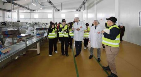 Excelo achève 65 % des investissements de son plan industriel 2018-2020