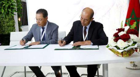 Signature d'une convention d'assurances entre MAMDA et l'Association Marocaine des Multiplicateurs de Semences (A.M.M.S)