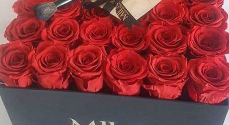 MILA … La maison des Roses Eternelles