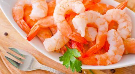 Poisson: le Brésil va exporter au Maroc crevettes et calamars…