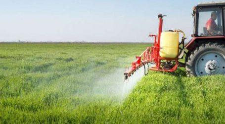 Santé alimentaire: l'ONSSA étudie la possibilité d'interdire les pesticides à base de «Chlorpyriphos»