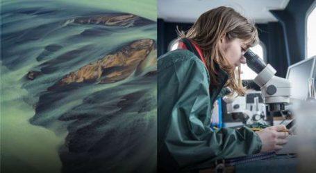 Prix de l'innovation Ericsson 2020 : faire face au changement climatique