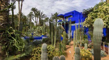Marrakech: Le Jardin Majorelle et le Musée Berbère rouvrent leurs portes